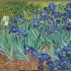 Van Gogh Irisi