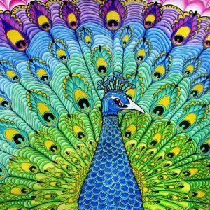 tablou canvas paun