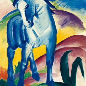 Tablou canvas Cal albastru