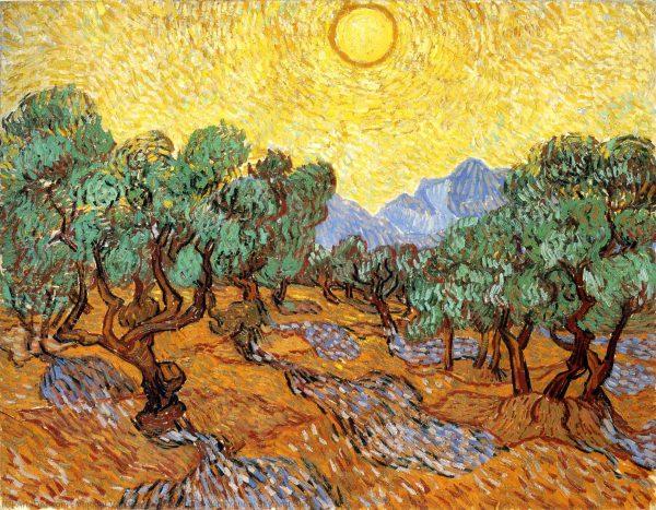 reproducere van gogh olive trees