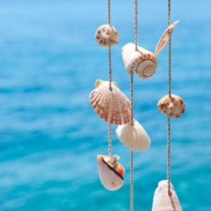 Tablou canvas deco scoici de mare