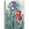 Tablou dansul irisilor, Printly