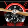 Tablou elice avion, Printly