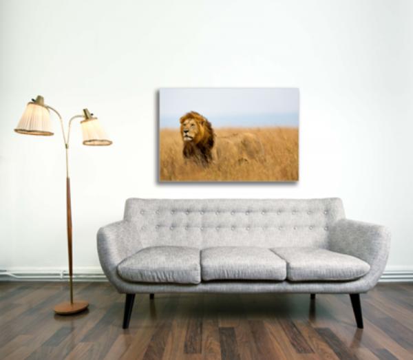 Tablou mighty lion