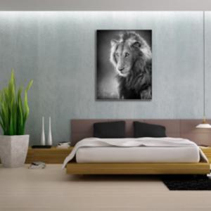 Tablou male lion