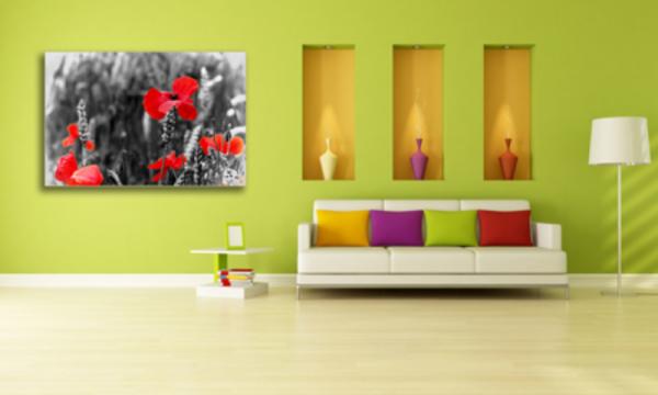 Tablou red poppy flower, Printly