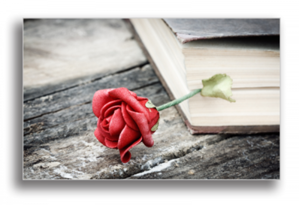 Tablou retro rose, Printly