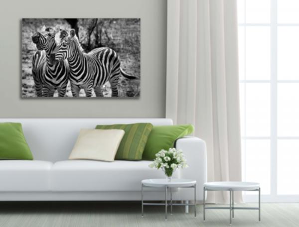 Tablou wild zebras