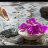 Tablou zen orchid, Printly